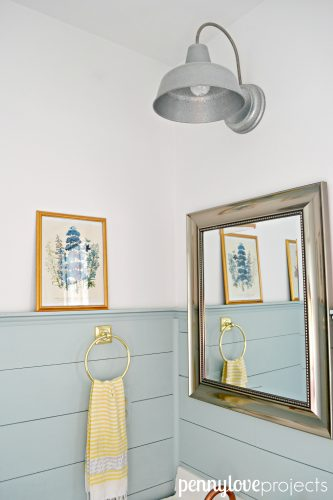 penny love projects powder room after 1