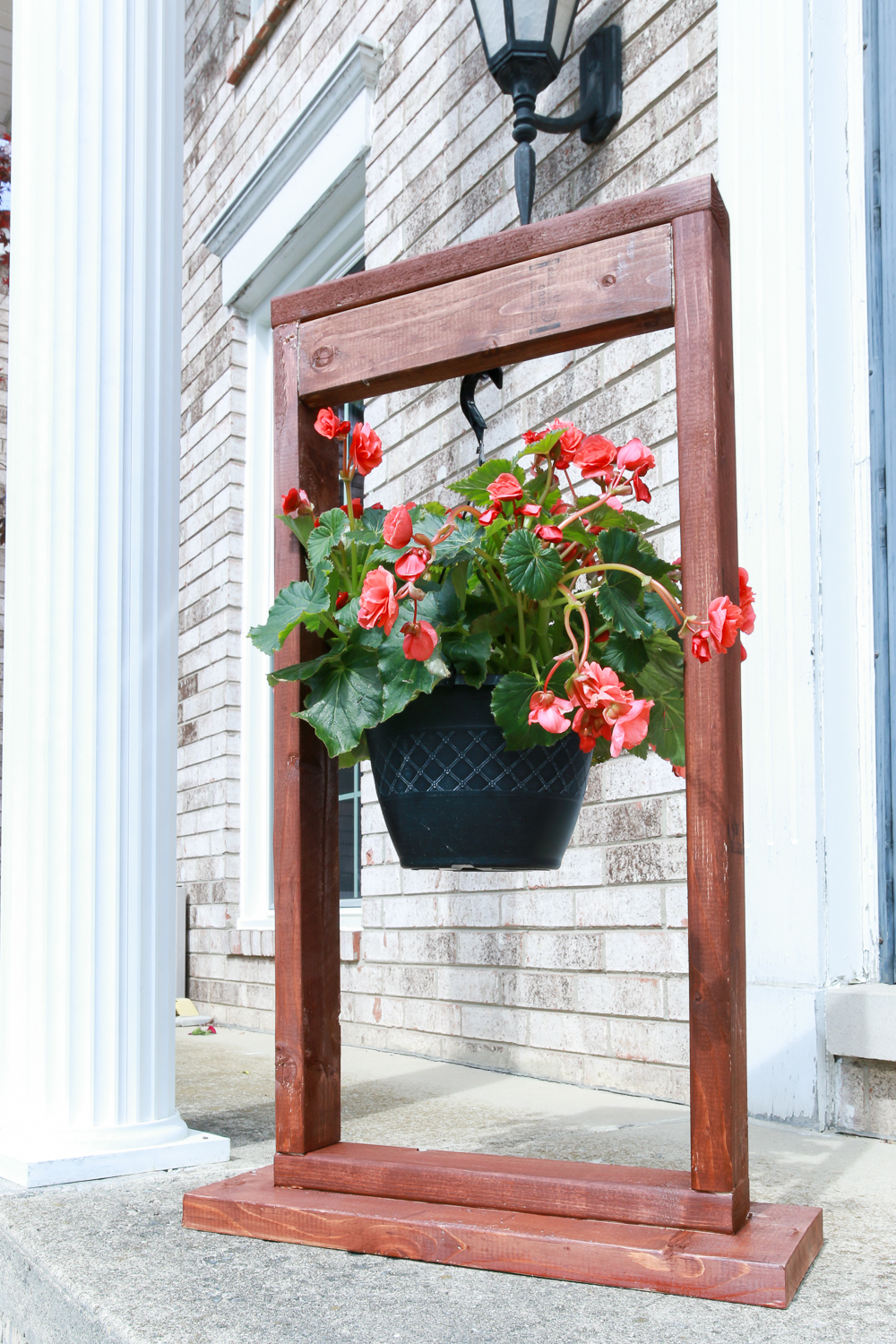 Outdoor hanging plants