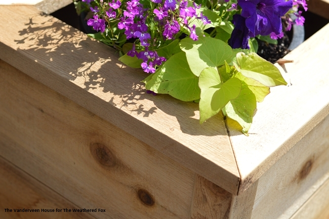 Cedar-outdoor-planter-building-plans