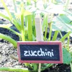 DIY Chalkboard Garden Markers