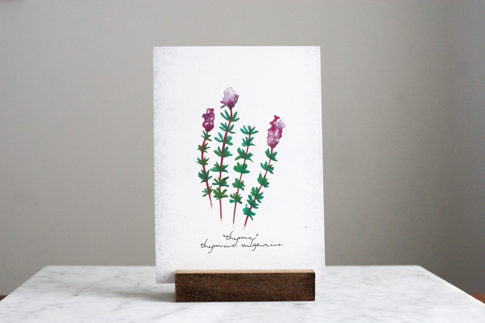 Farmhouse Style Botanical Prints, Printables, Shopping Guide